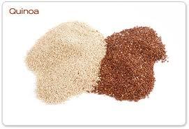 sortes de quinoa